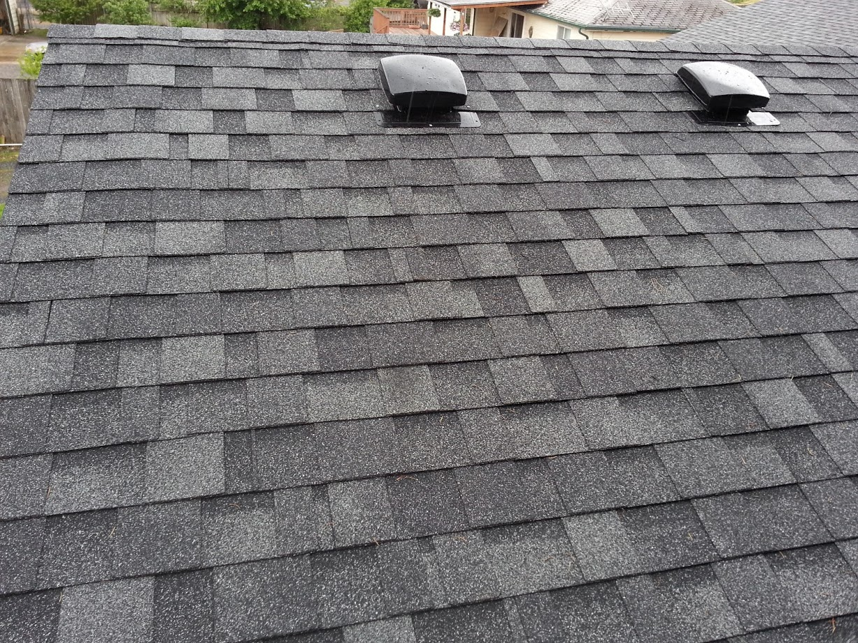 roof shingles install