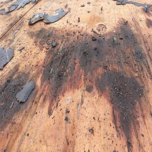 exterior-dry-rot-repair